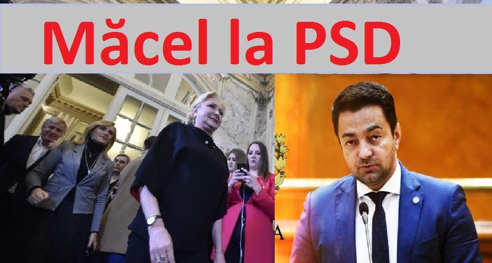 Cererea deputatului Rotaru nu a rămas fără răspuns: demisii în bloc la vârful PSD 8