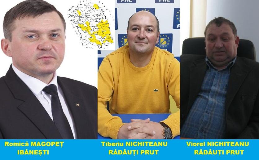 Doar trei liberali au viitor în jumătatea de nord a județului 8