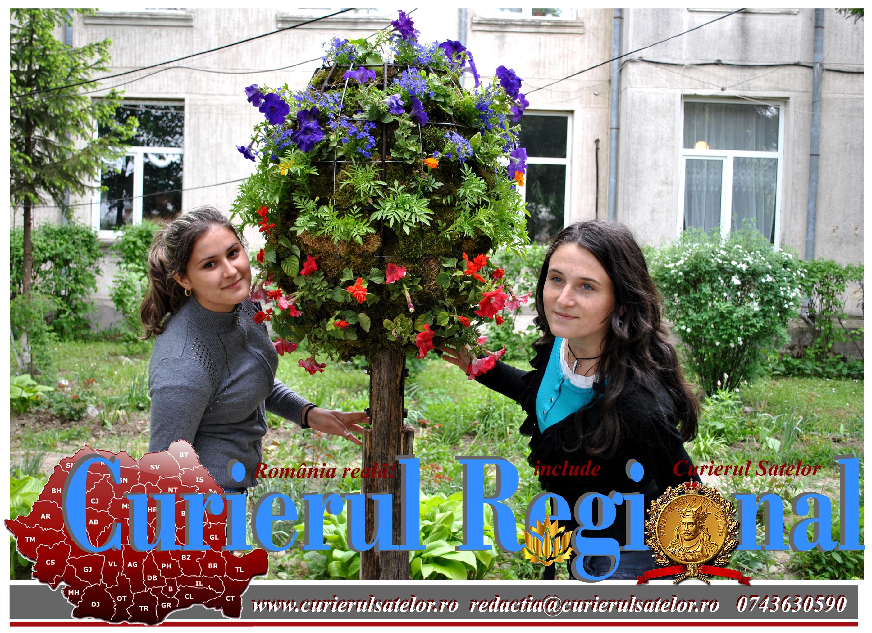 Unic în România - Miracolul verde din campusul școlar Vorona 27