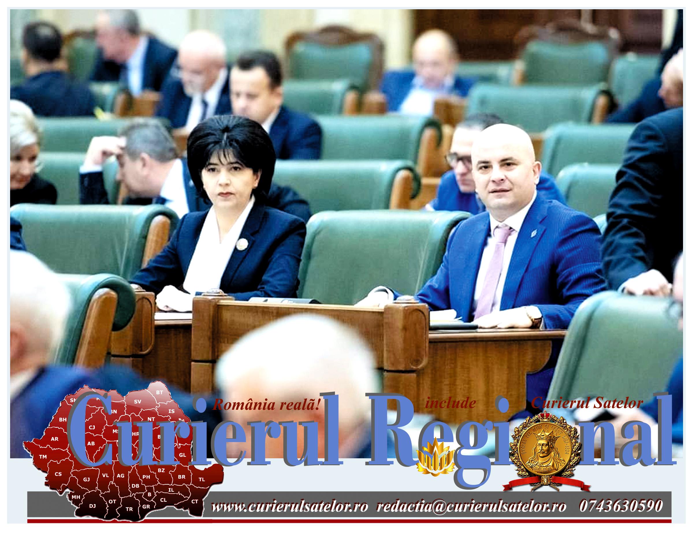 În timp ce Guvernul o lălăie pe la ghicitoare politice, PSD are grijă de țară. Lege pentru mame pe timpul crizei COVID 19 22